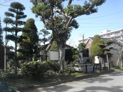 上総 貝渕陣屋(木更津市)