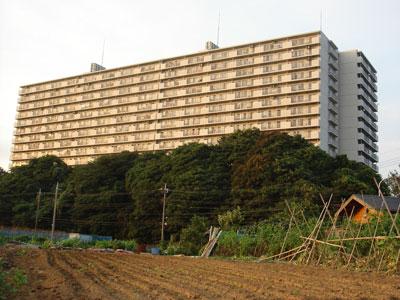 下総 馬加城(千葉市)