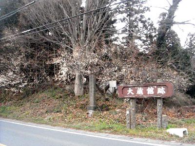 武蔵 大蔵館(嵐山町)