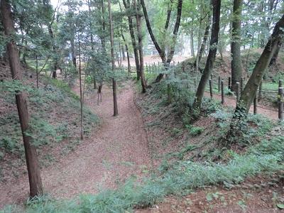 武蔵 滝の城(所沢市)