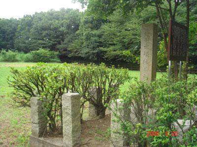 武蔵 赤塚城(板橋区)