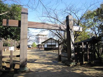 武蔵 枡形山城(川崎市)