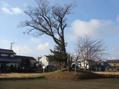 信濃 井川城(松本市)