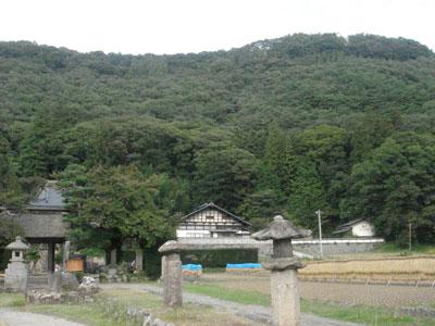 信濃 田口城(佐久市)