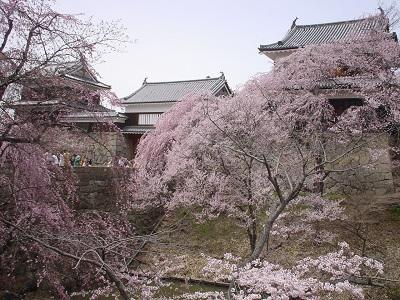 信濃 上田城(上田市)