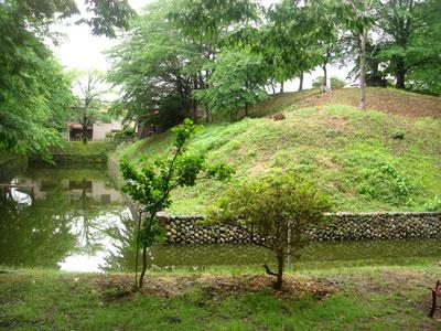 越後 蔵王堂城(長岡市)