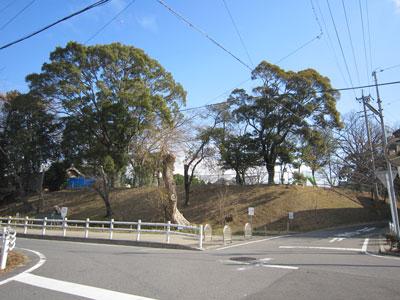 三河 井田城(岡崎市)