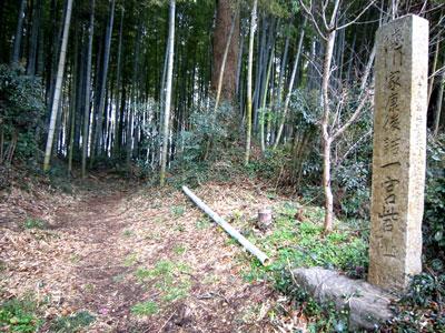 三河 一宮砦(豊川市)