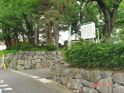 三河 桜井城(安城市)