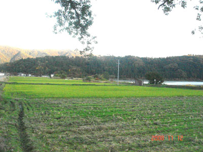 近江 岩崎山砦(余呉町)