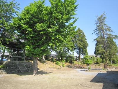 近江 三田村城(長浜市、旧浅井町)