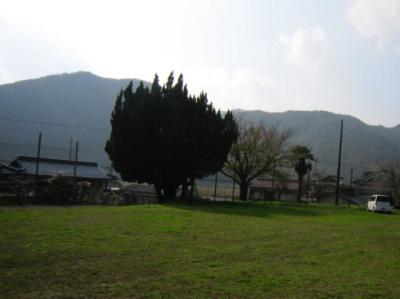播磨 苔縄城(上郡町)