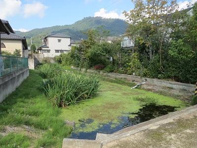 讃岐 佐料城(高松市)