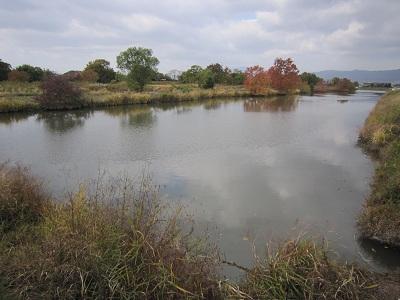 肥前 姉川城(神埼市)